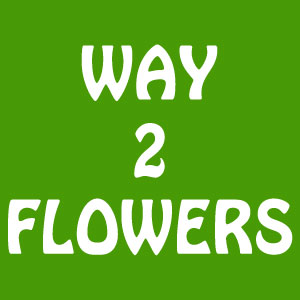 Way2flowers Blog Zumvu
